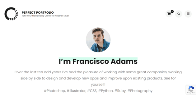 Perfect Portfolio - well-designed WordPress theme