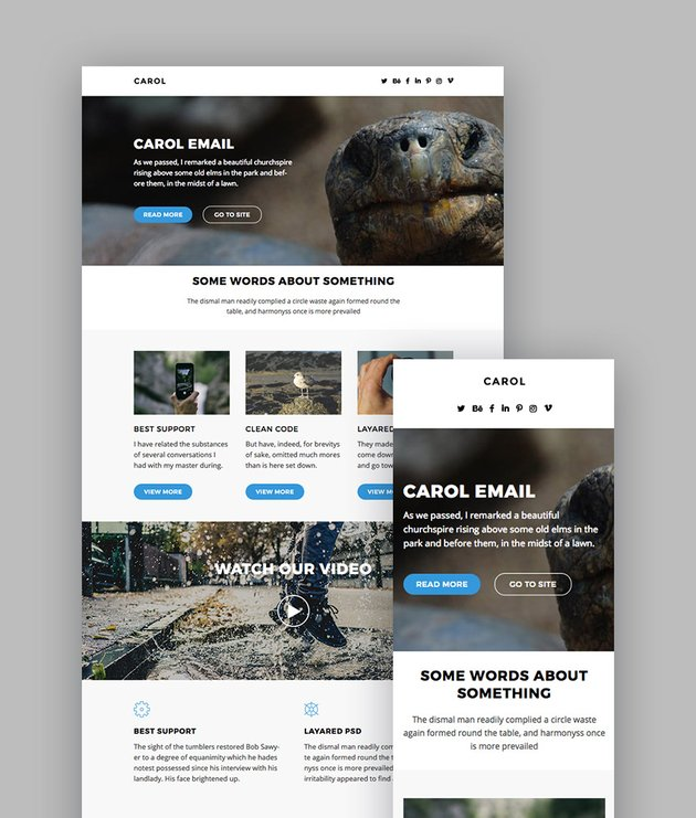 Carol Best Email Newsletters With 100 Modules - Responsive Email