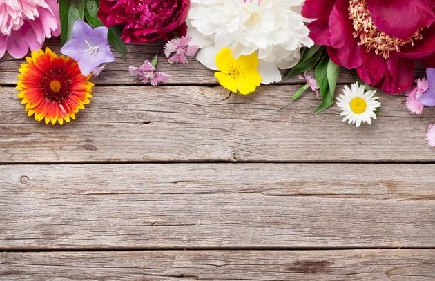 Garden flowers on wood