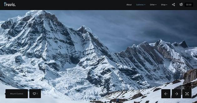 Photography Travis-WordPress