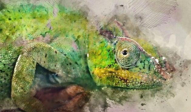 Watercolor Motion Kit