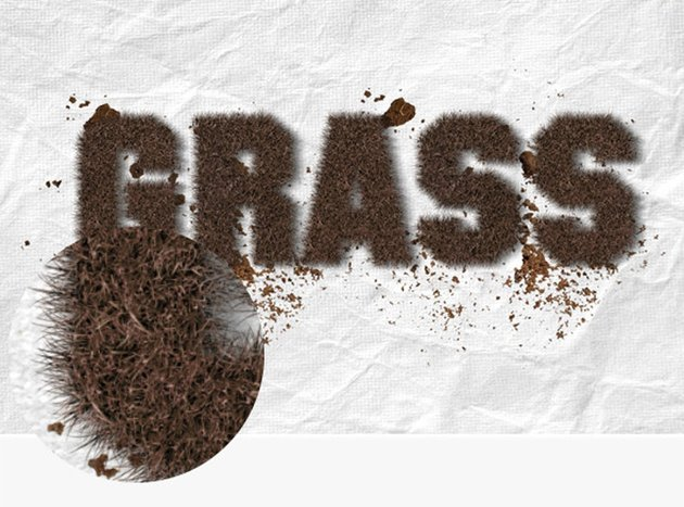 Realistic Grass Effect Photoshop Action