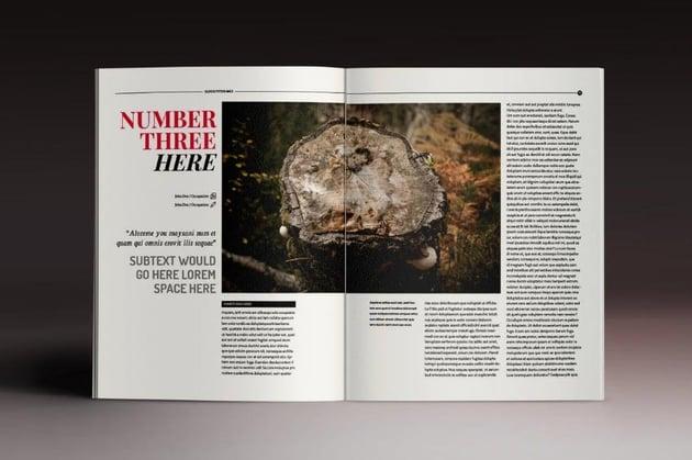Sober InDesign Magazine Template