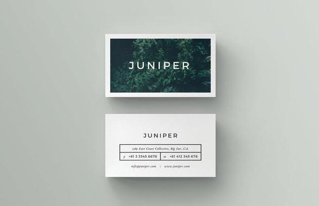 Juniper InDesign Business Card Template