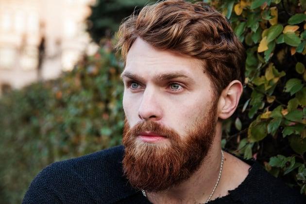 Male Beard Portrait From Pixabay