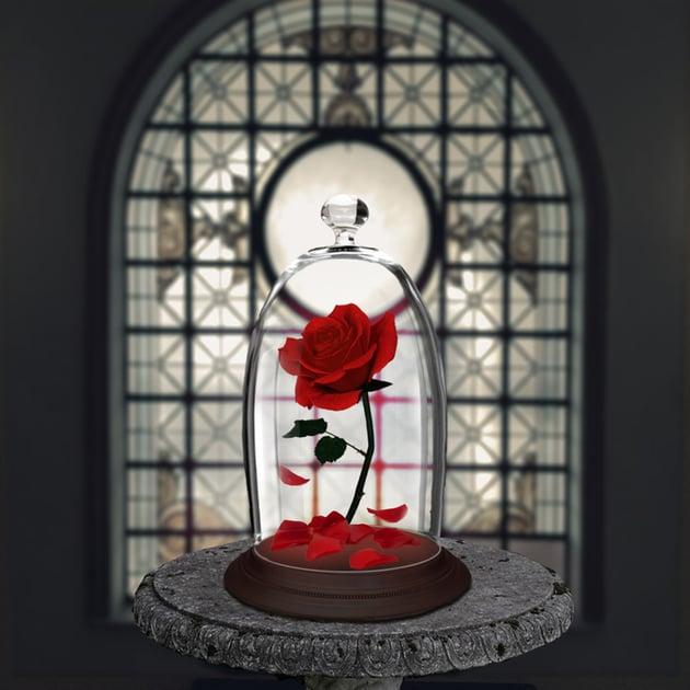 Add the rose petals