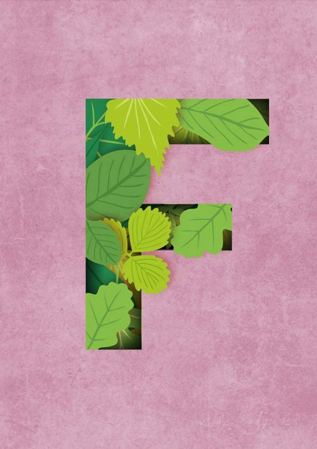 How to Create a Quick 3D Botanical Letter Effect in Adobe InDesign