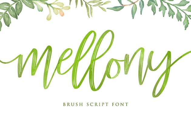 Mellony Brush Script