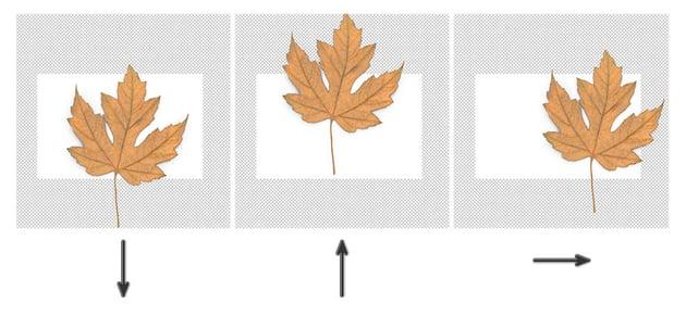 Using Arrow Keys in Photoshop