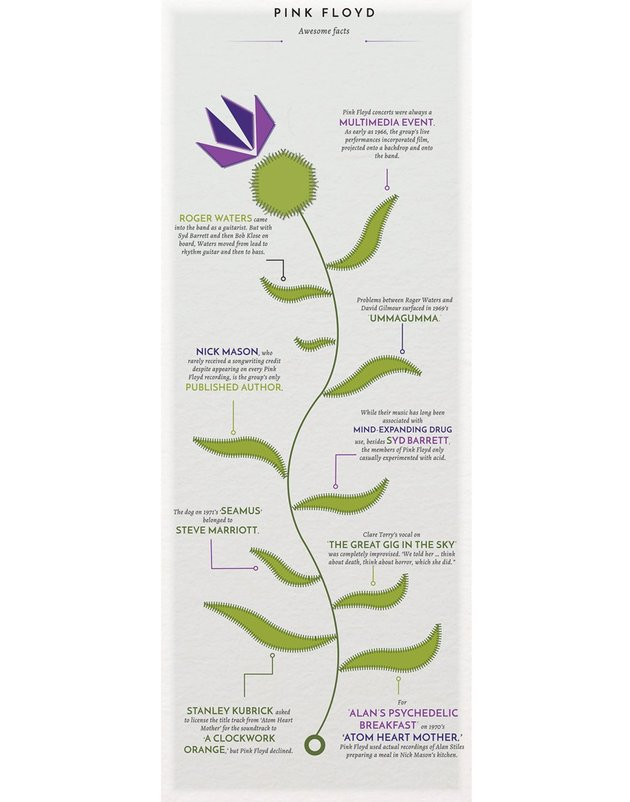 Create a Thistle Infographic to Celebrate Burns Night in Adobe InDesign