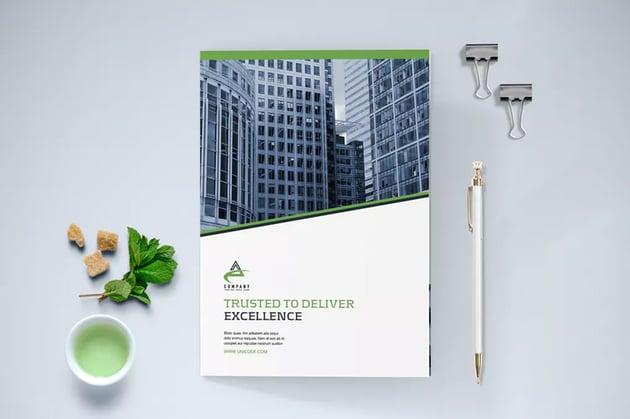 Business Brochure Bi-Fold