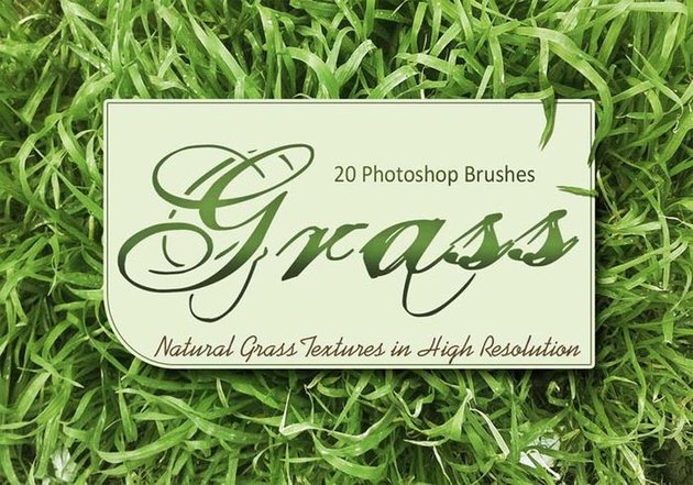 20 Grass Texture PS Brushes