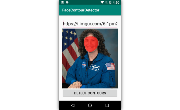 App highlighting a face