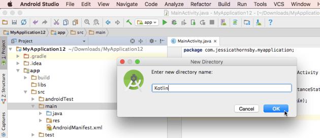 Create a dedicated Kotlin directory