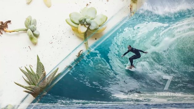 transition between a surfer catching a wave and some cacti