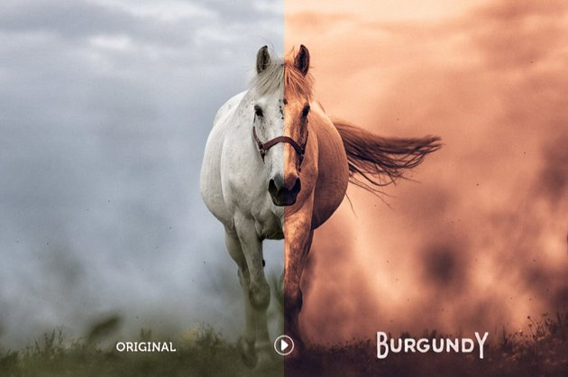 Horse in a field comparison image with and without preset