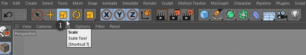 Scale tool in Cinema 4D