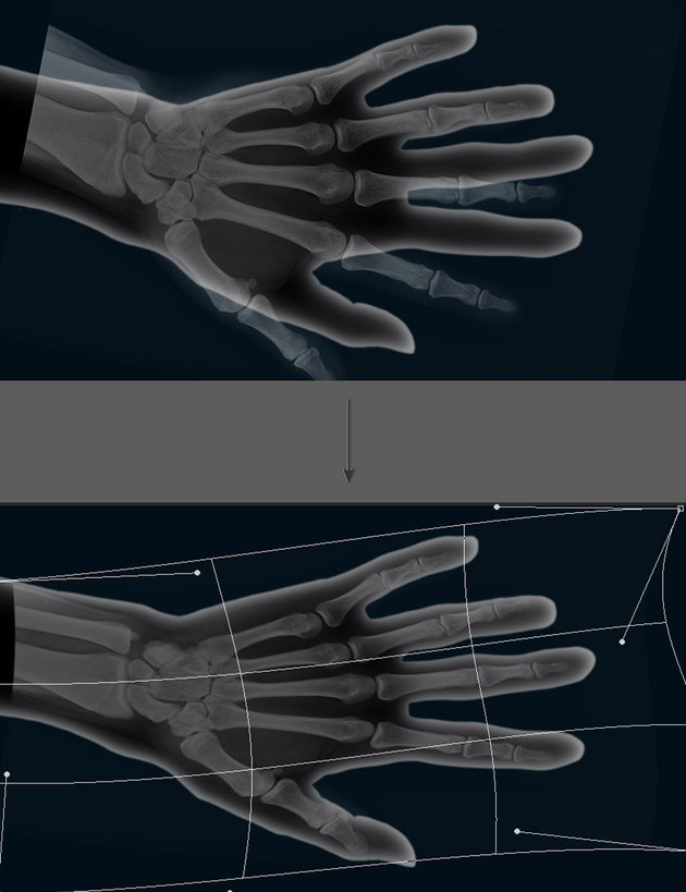 Use the warp tool to adjust the bones to the shape of the hand