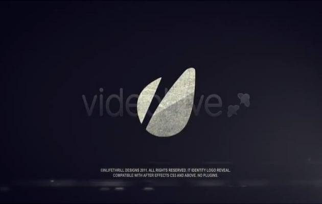 IT logo identity