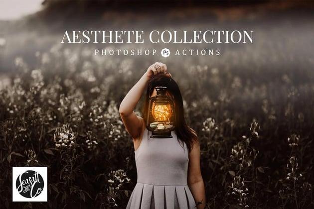 Aesthete Collection