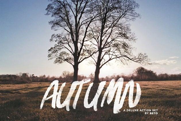 Autumn Action