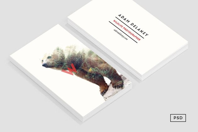 Wildlife Business Card Template