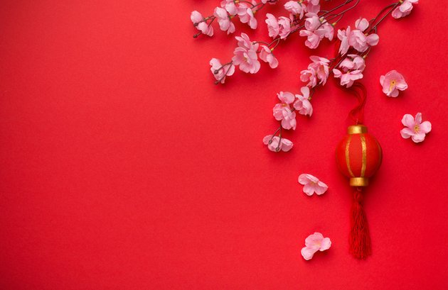 Chinese lunar new year - Beautiful decoration with plum blossom
