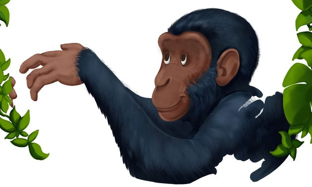 Adding Details To The Chimpanzee