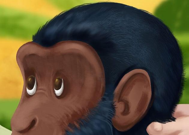Chimpanzee Head Detail