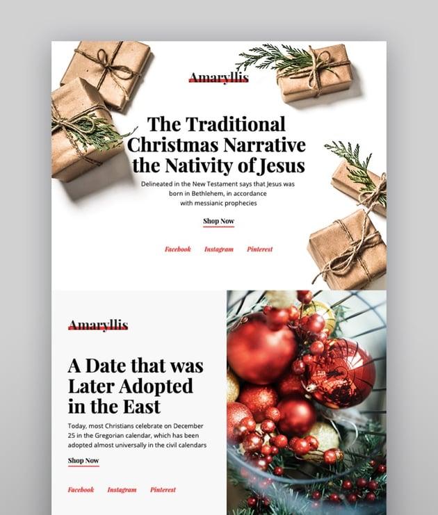 Amaryllis Responsive Christmas Email Template