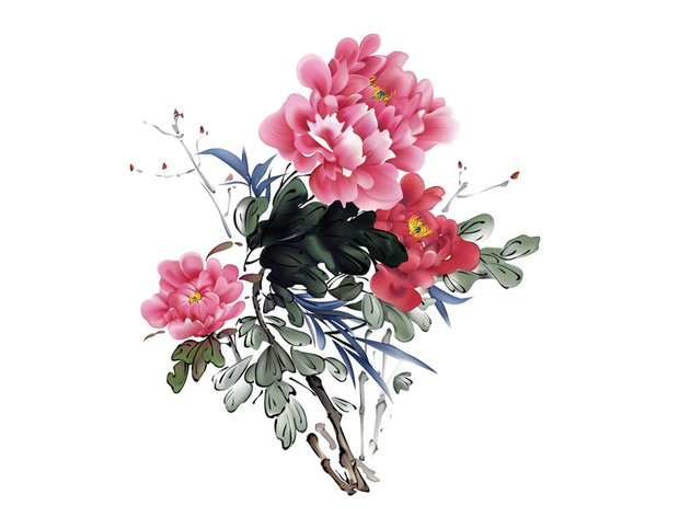 How to Draw Chinese Flower Paintings Branches Leaves Flowers