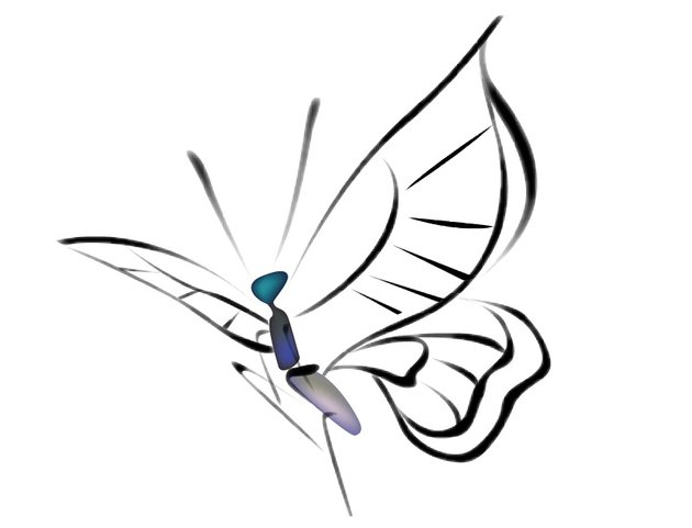 How to Draw Chinese Ink Paintings in Vector Butterfly Body  Wings
