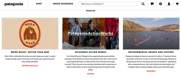 Patagonia website