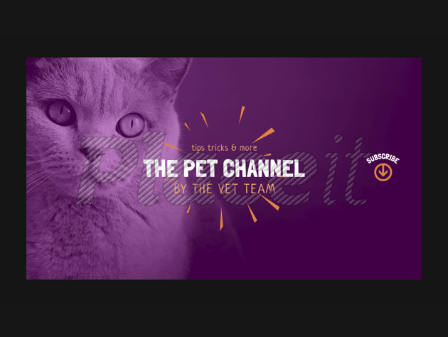 pets channel template