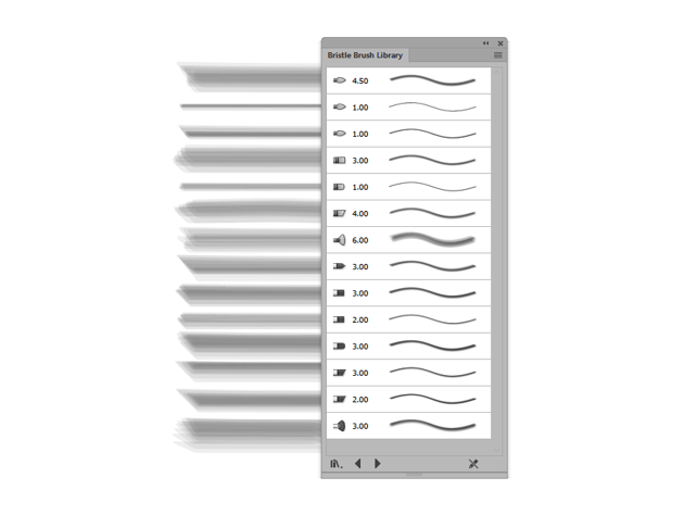 preview of the included bristle brushes