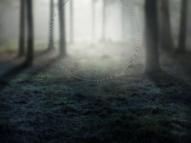 add forest light 2