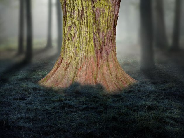 tree masking