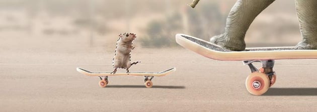 load rat selection