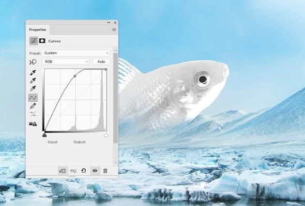 fish curves
