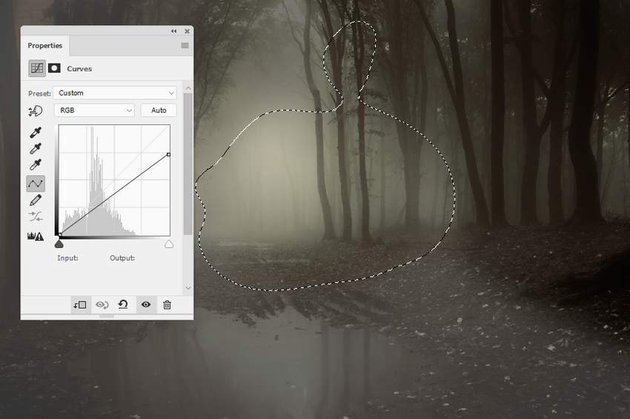 forest curves 3
