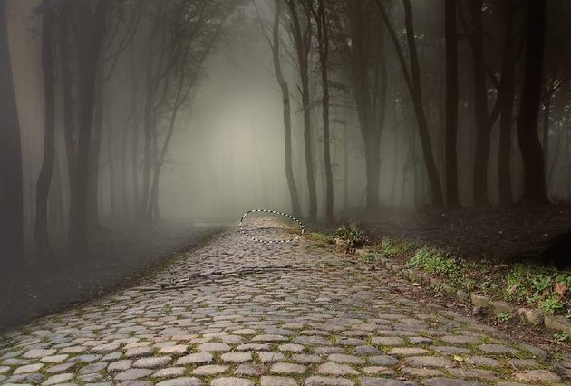 path 1 selection