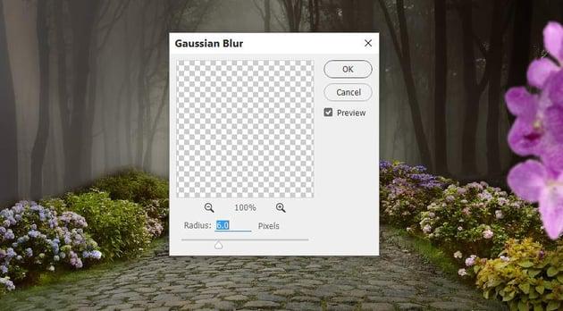 flower 1 gaussian blur