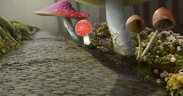 add mushroom 4