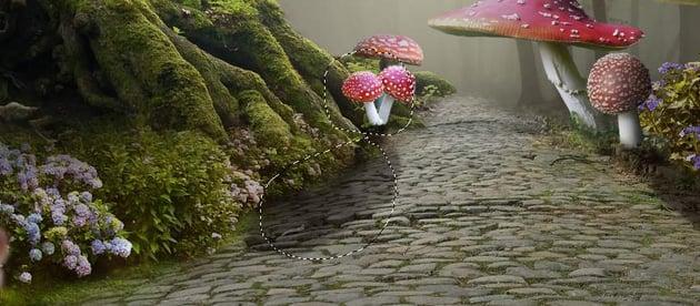 add mushrooms 6