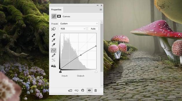 mushrooms 6 curves 1