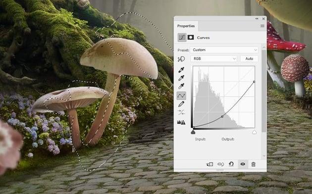 mushrooms 7 curves 1