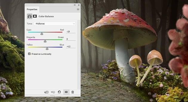 mushrooms 2 color balance
