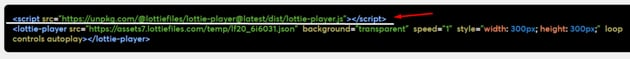 The required LottieFiles JvaScript script