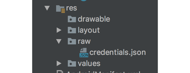 credentialsjson file in the resraw directory
