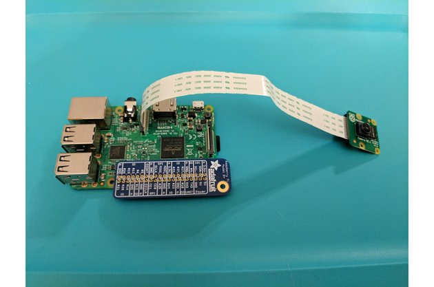 Raspberry Pi with connected camera module